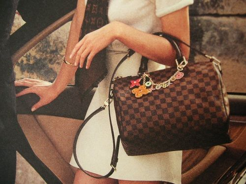 Image of the Speedy Louis Vuitton bag