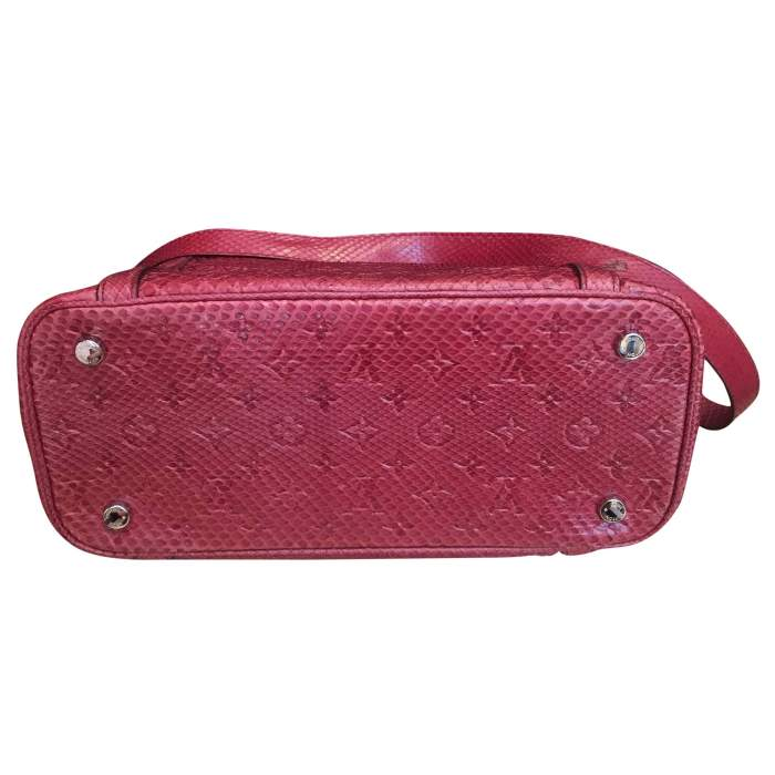 Raspberry python Handbag-4