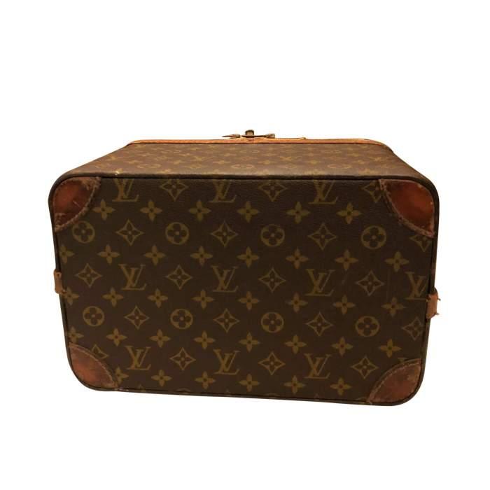 Brown beauty Case-8