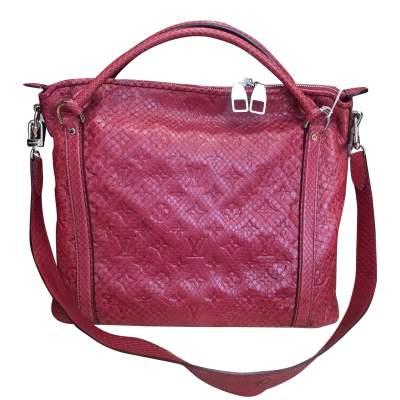 Raspberry python Handbag-3