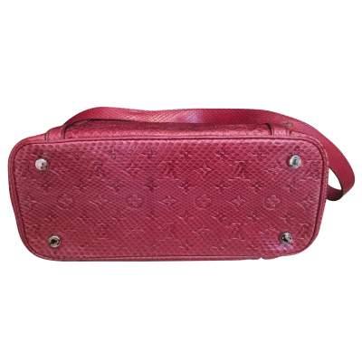 Raspberry python Handbag-5