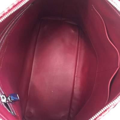 Raspberry python Handbag-7