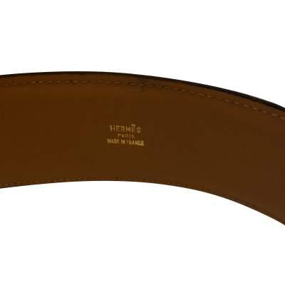 Dog collar Belt-5