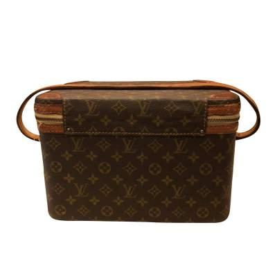 Brown beauty Case-3