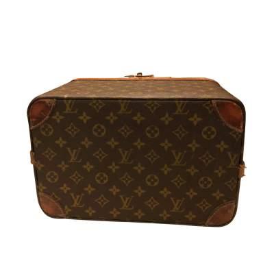 Brown beauty Case-9