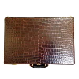 Vintage Crocodile Suitcase-0