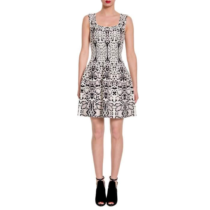 Printed Dress -4